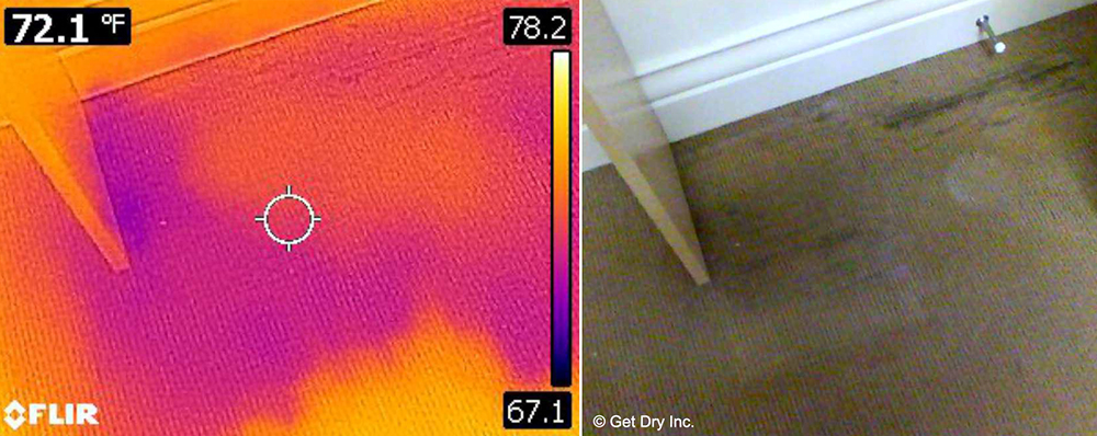 Moisture contained in a home's carpet