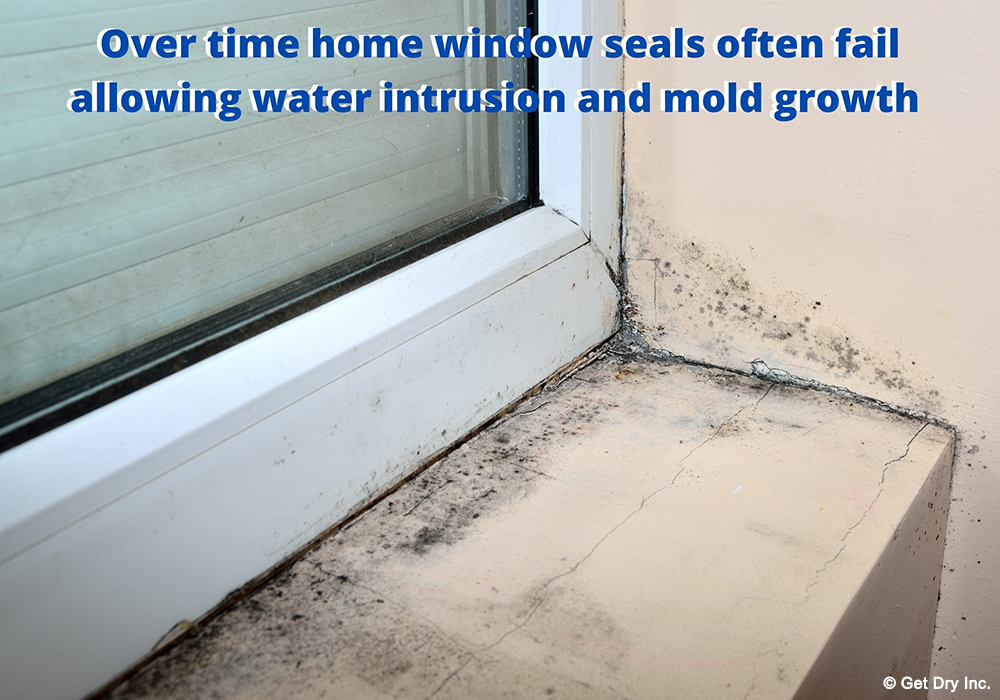Old window sealing can lead to a mold problem