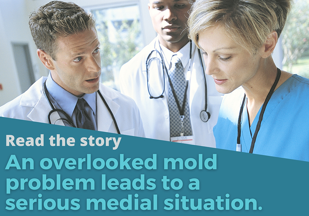Mold damage leads to health issues.