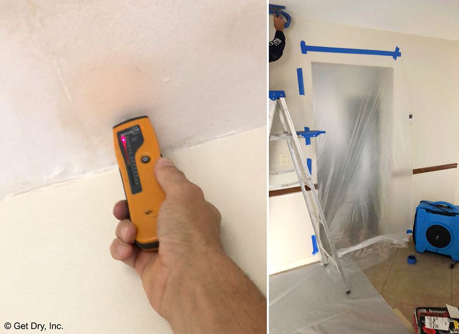 Broward County Mold Removal and Testing.