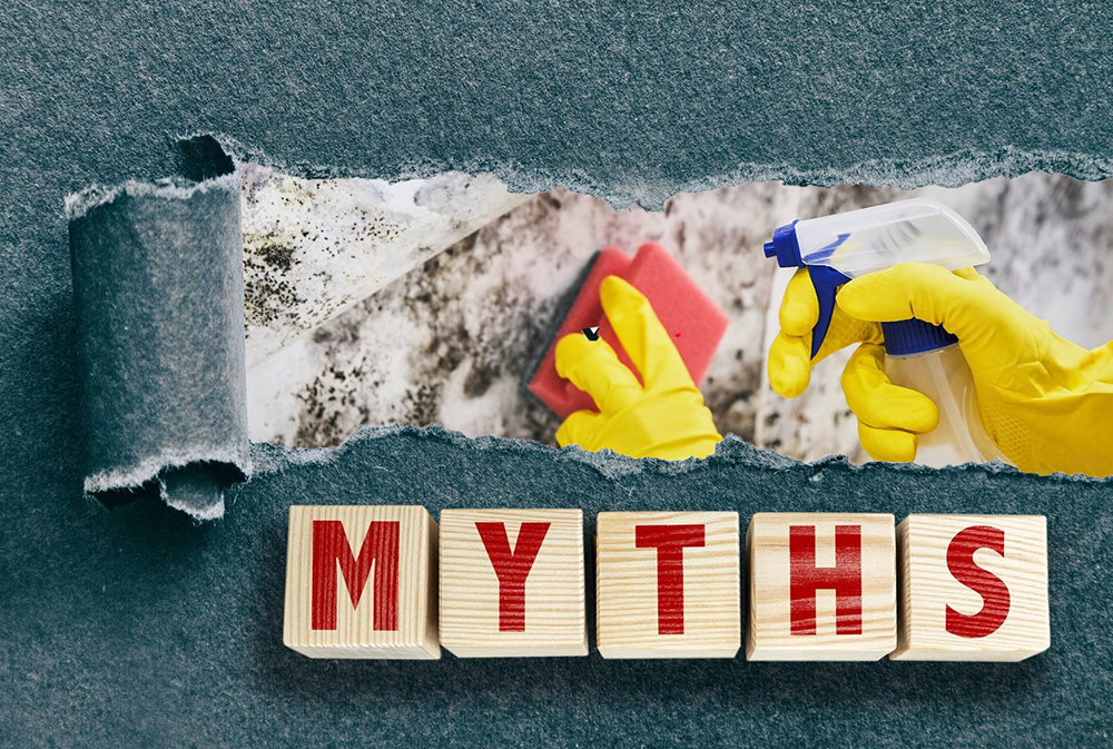 There are many myths that surround mold and mold removal