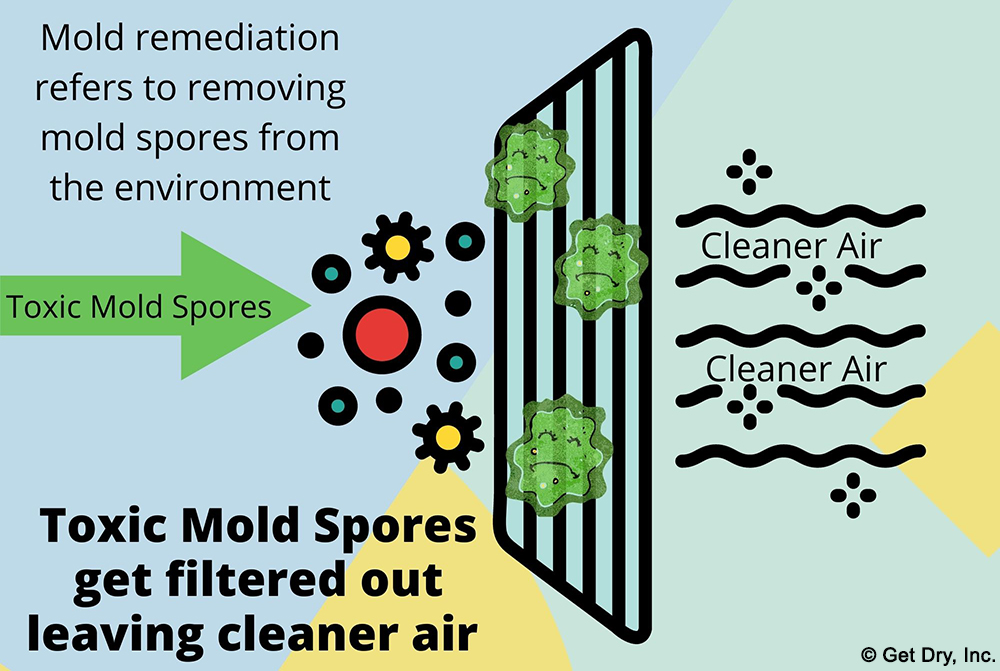 Diagram showing mold spore removal